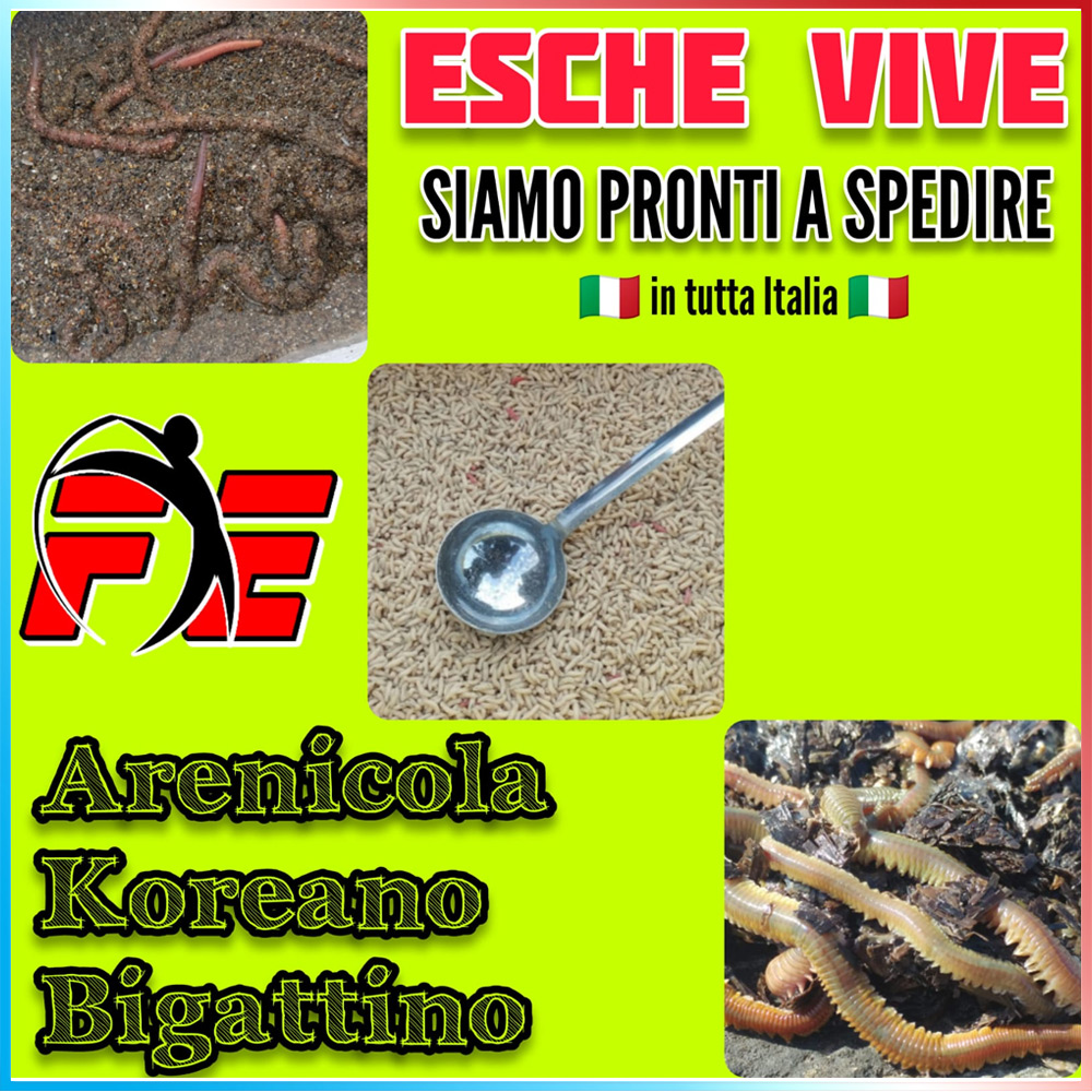 Esche Vive Pack Shipping