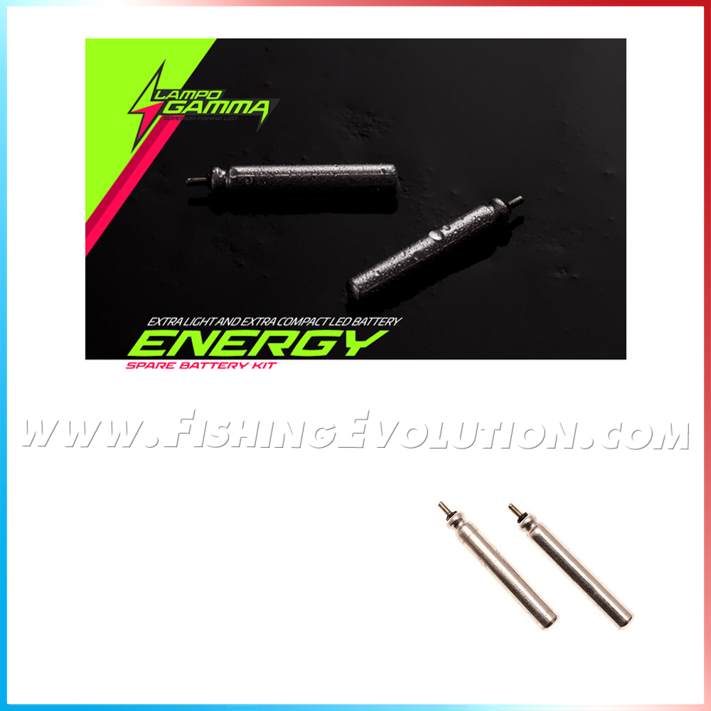 Kit Energy 2 Batterie LG425