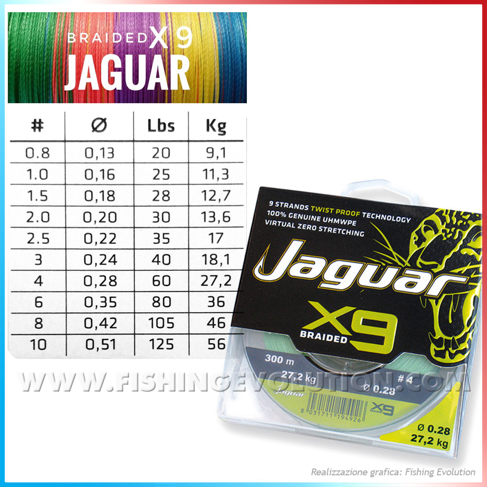 Jaguar Draided X9 300mt
