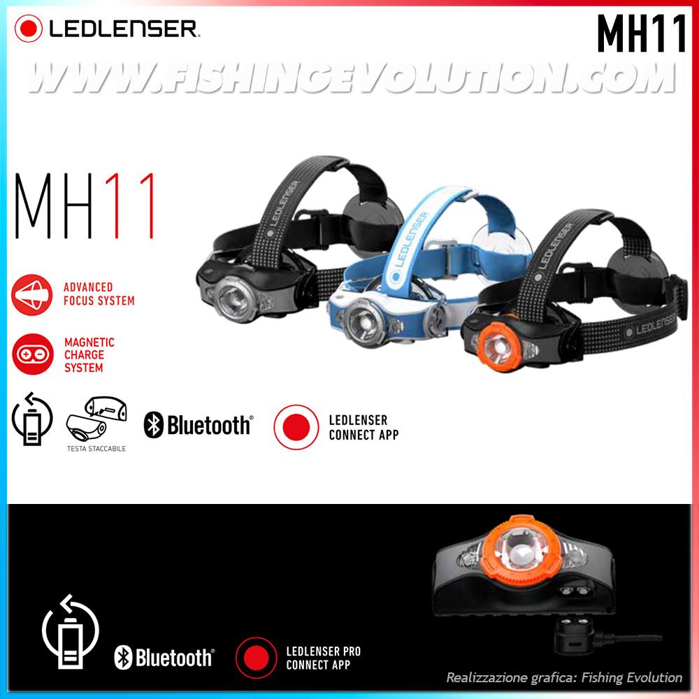 Mh11C.jpg