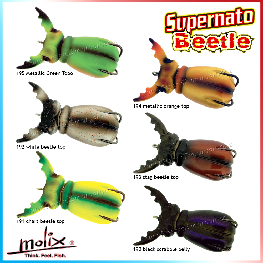 Molix - Supernato Beetle