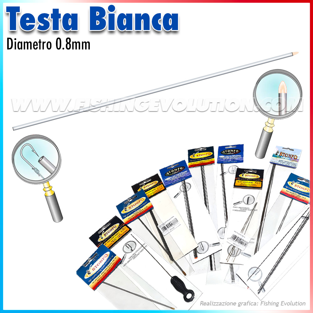 Art.550 Aghi Testa Bianca (5 pz)