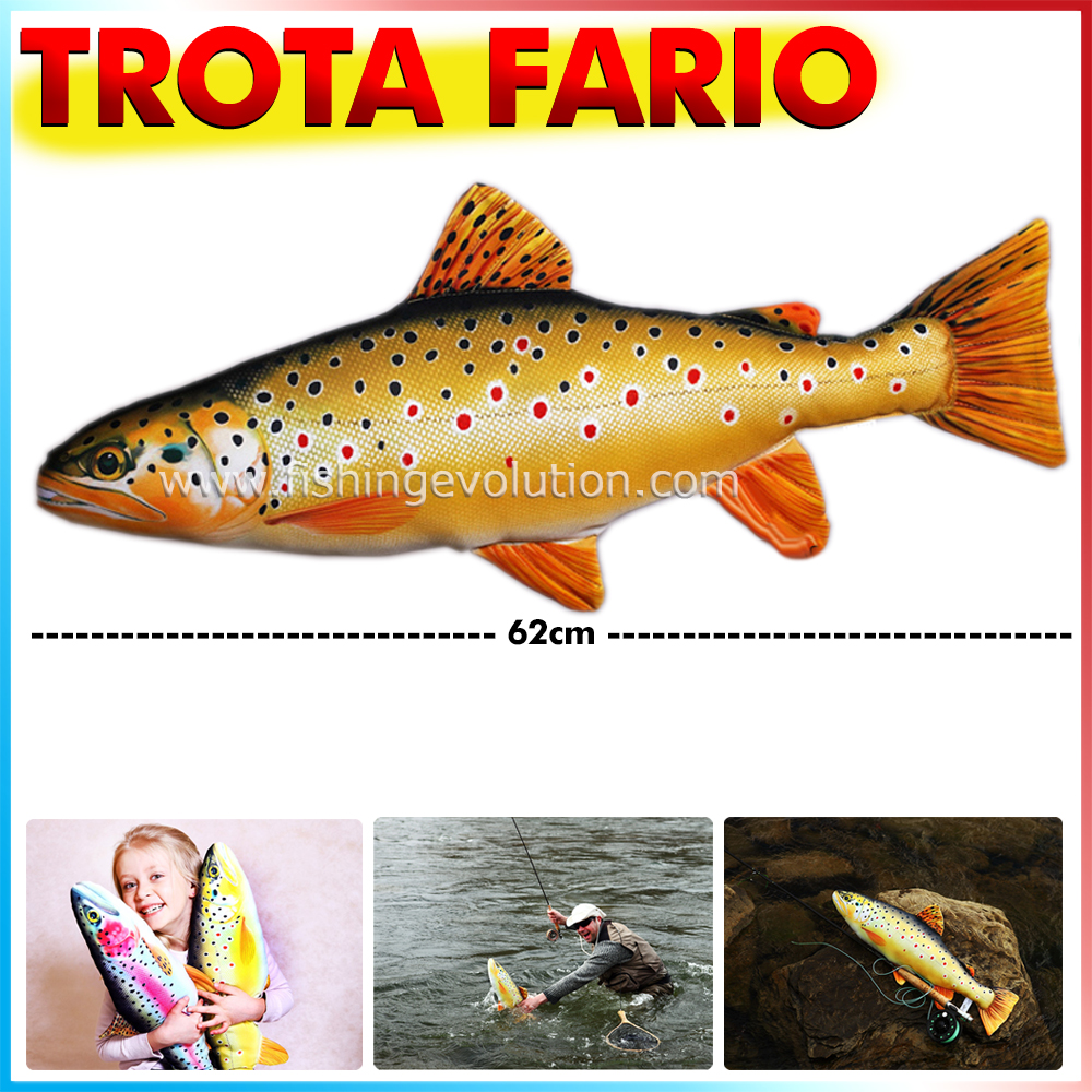 fish-pillow-trota-fario_3261.jpg