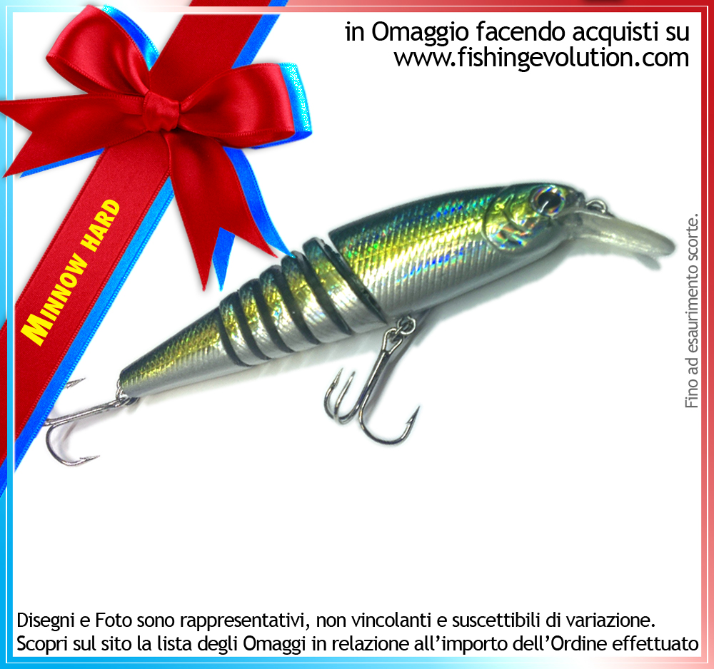 fishing-evolution-esca-artificiale-hard_3100.jpg