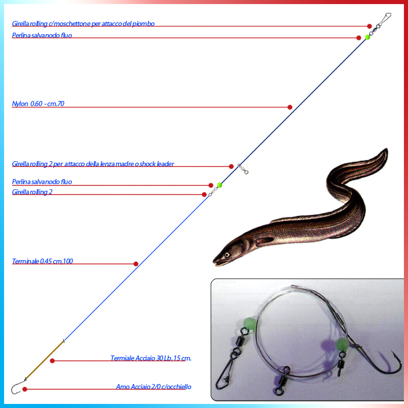 fishing-evolution-trave-grongo--conger_2701.jpg