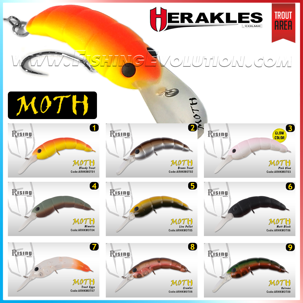 herakles-moth-_4092.jpg