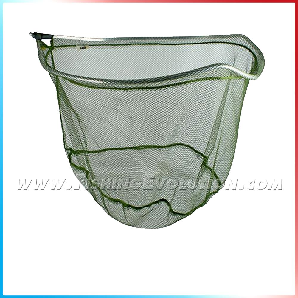 import-testa-guadino-a-paletta-56cm_3802.jpg