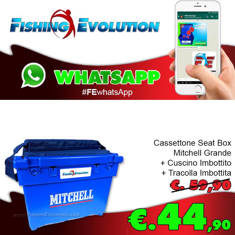 mitchell-super-offerta-cassettone-whatsapp_3575.jpg