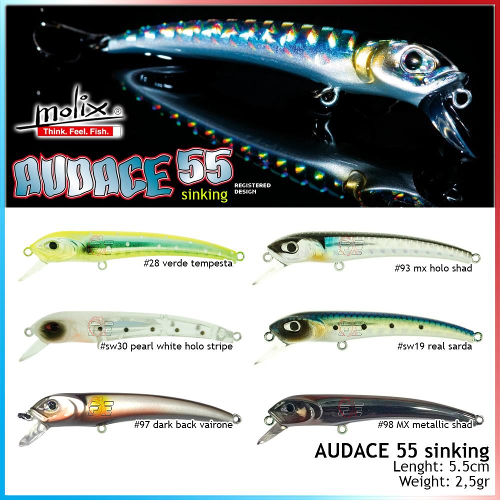 Audace 55 Sinking