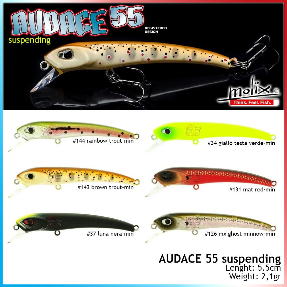 Audace 55 Suspending