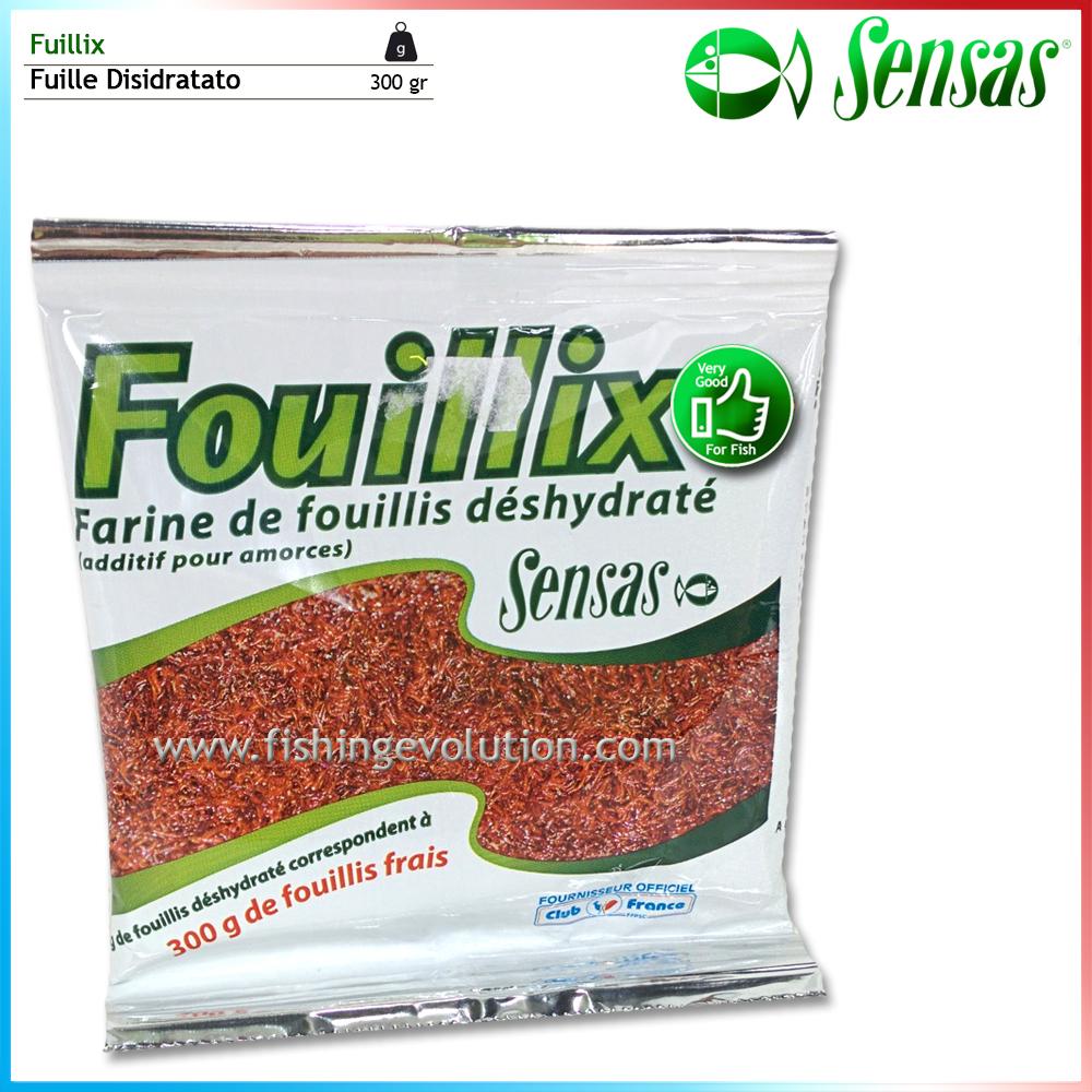 Fouillix
