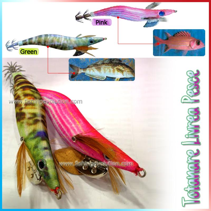 Totanare Livrea Pesce