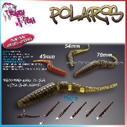 Polaris 5,5 cm.