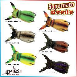 Molix - Supernato Beetle
